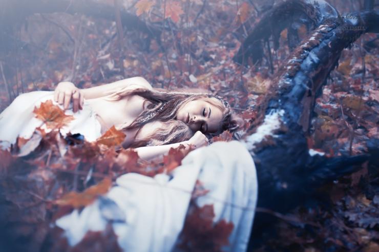 autumnfalls4